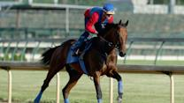 Will American Pharaoh complete the Triple Crown?