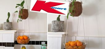 Clever hack turns Kmart buy into space saver