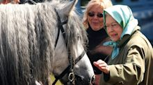 Queen lost five prized Balmoral ponies because of 'cruel' disease
