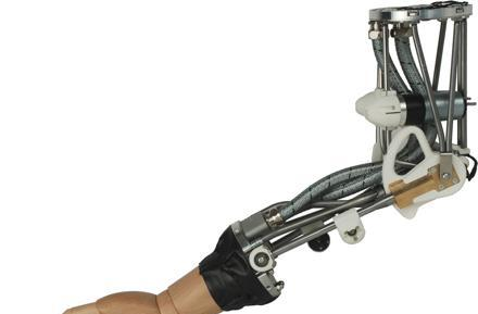 Elephant trunks inspire ISELLA robotic arm