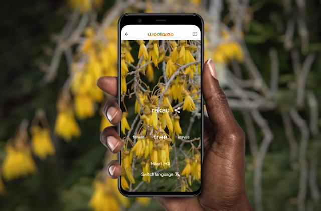 Google's AI photo app uses crowdsourcing to preserve endangered languages