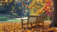 Happy First Day of Fall 2019: 5 Fall Quotes to Celebrate Autumn