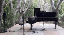 La Roque-d'Anthéron : au milieu de la forêt, des pianos font résistance dans le désastre culturel