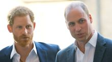 Never-Before-Seen Portraits Of Prince William, Prince Harry Head To Buckingham Palace