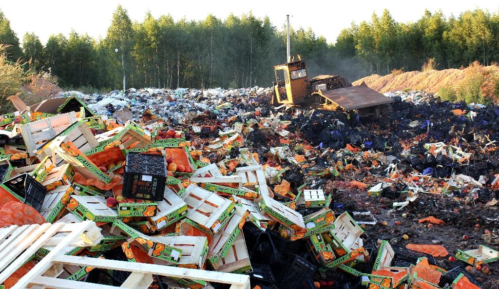 A bulldozer crushes boxes of peaches outside Smolensk in August 2015 after Russian officials began a controversial drive to destroy Western food smuggled into the crisis-hit country despite a public outcry (AFP Photo/)