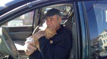 Homem alimenta gatos de rua diariamente há 22 anos