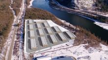 Invictus Signs Binding LOI for Option to Acquire BC Licensed Producer Applicant with Two Locations and 32 Acres of Buildable Land