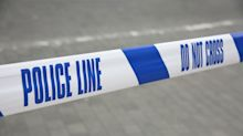 Investigation launched after eggs thrown at nine-month-old baby in 'racially aggravated assault'