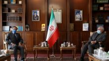 Iran, IAEA strike deal on nuclear inspectors' access to sites