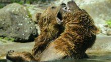 Bear Market Alert: The Straits Times Index Falls Below The 3,000 Level