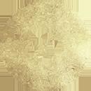 Sagittarius Daily Horoscope – August 3 2020