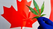 Better Marijuana Stock: Aurora Cannabis vs. Hexo Corp.