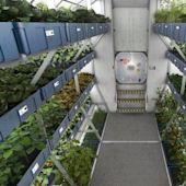 Space farms could feed Musk's mission to colonize Mars