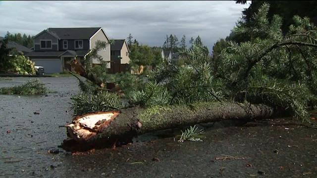 Tornado Hits Washington State