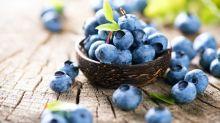 【醫生專欄】你可能不知的藍莓神奇功效