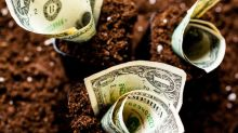 1 Dividend Stock Yielding Over 6% That You Won't Want to Miss