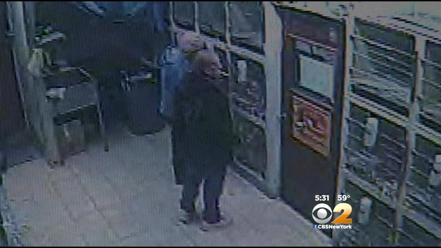 Search On For Thieves Who Stole Dog From Brooklyn Pet Store