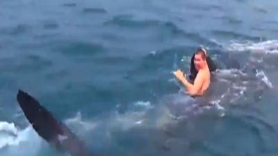 Raw: Fla. Teen Catches Ride With Whale Shark