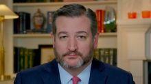 Senator Ted Cruz Calls CNN Reporter 'Obnoxious' and 'Partisan/Unfair'