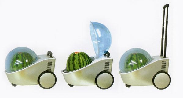 Watermelon cooler push cart: perfect for those sultry North Carolina summers