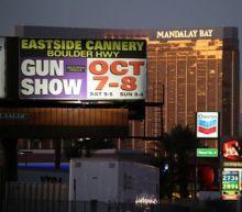 Nevada gun shows tied to firearm violence in California: study