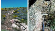 Blackrock Gold Finds New East-West Vein System at Its Silver Cloud Property in Nevada
