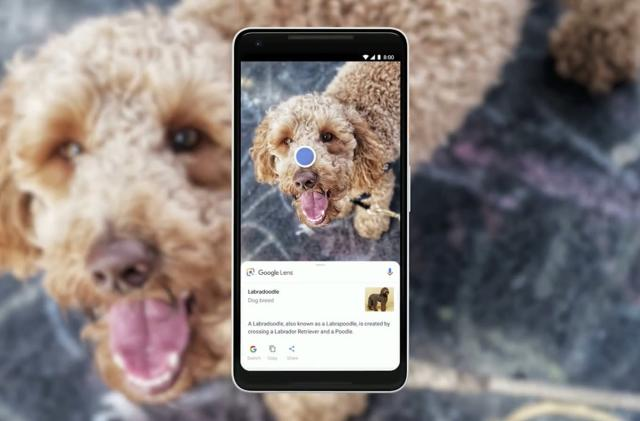 Google Lens comes to the Pixel camera apps (update)