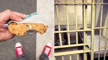 Man jailed after devouring cookie without permission