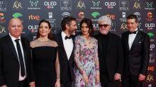 """""""Dolor y gloria"""" triunfa en la gala de los Goya"""