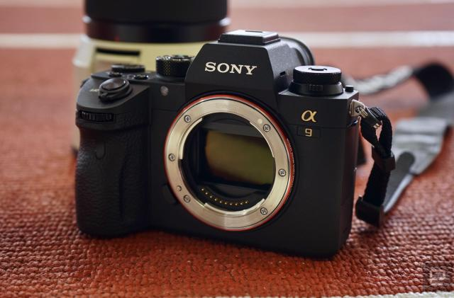 24 hours with Sony's A9 full-frame mirrorless camera