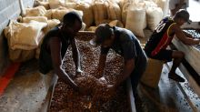 Commodities: Cocoa tops 2018 gainers, as growth worries roil metals, crude