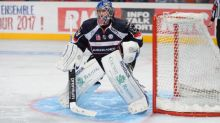 Hockey - L. Magnus - Ligue Magnus : Angers engage l'ancien joueur de NHL Zach Hamill