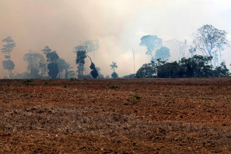Raging fires in the Amazon rainforest were on the G7 agenda