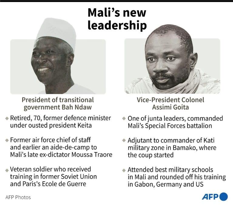 Mali's interim leaders