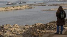 Retroceso de glaciares seca el río más importante de Europa
