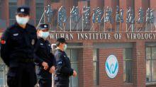 World Health Organization: 'Very unlikely' coronavirus escaped a Chinese lab