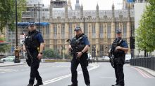Westminster car crash: Armed police praised for quick response to apprehend driver