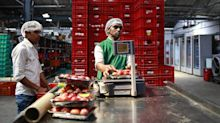 As India's e-commerce sector reels, grocery is feeding another frenzy