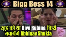 Abhinav Shukla Traps between Wife Rubina and Immunity Task