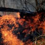 G7 nations close to agreement on tackling Amazon fires: Macron