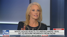 Kellyanne Conway called out by Chris Wallace for calling timing of Ukraine aid 'coincidence'