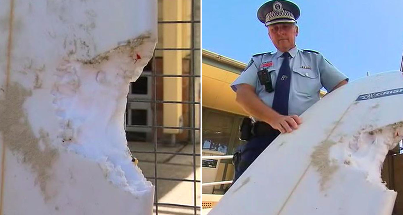Shocking surfboard photos show extent of Byron Bay shark attack