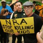 NRA under mounting pressure as companies cut ties with gun lobby