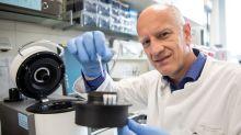 Antikörper bieten vermutlich längerfristig Corona-Immunität