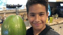 Guinness World Record's heaviest avocado grown in Hawaii, weighing in over 5 pounds