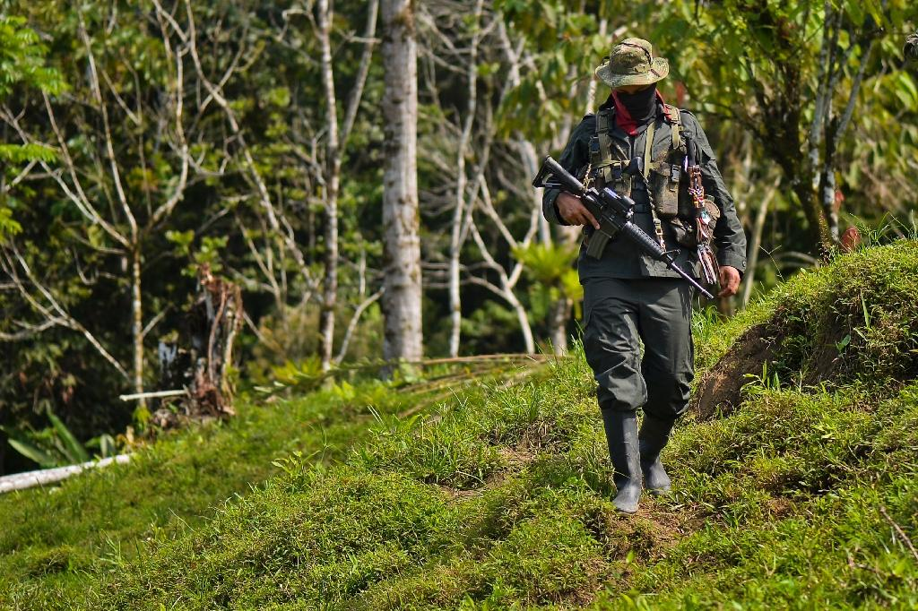The National Liberation Army (ELN) is the last remaining guerrilla insurgency in Colombia after the government signed a landmark peace accord with the FARC, the largest rebel group (AFP Photo/Luis ROBAYO)