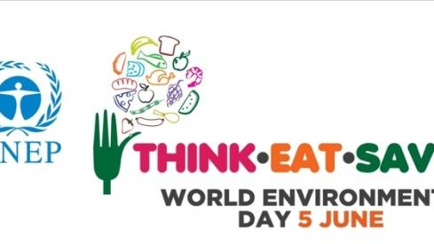 World Environment Day 2013: Think, eat, save