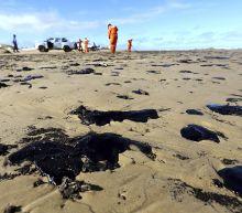 Brazil sending more troops in oil spill clean-up
