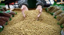 As trade tensions mount, China soybean buyers devise contingency plans