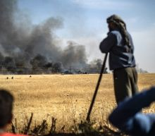 Field fires in Syria's Hasakeh kill 10: monitor